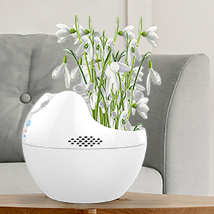室內臺式盆景空氣凈化器